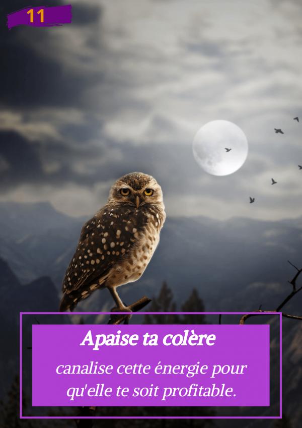 Oracle Le messager spirituel : Carte N°11 : Apaise ta colère