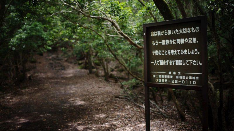 Les panneaux à l'entrée de la forêt d'Aokigahara incitant les personnes à faire demi-tour