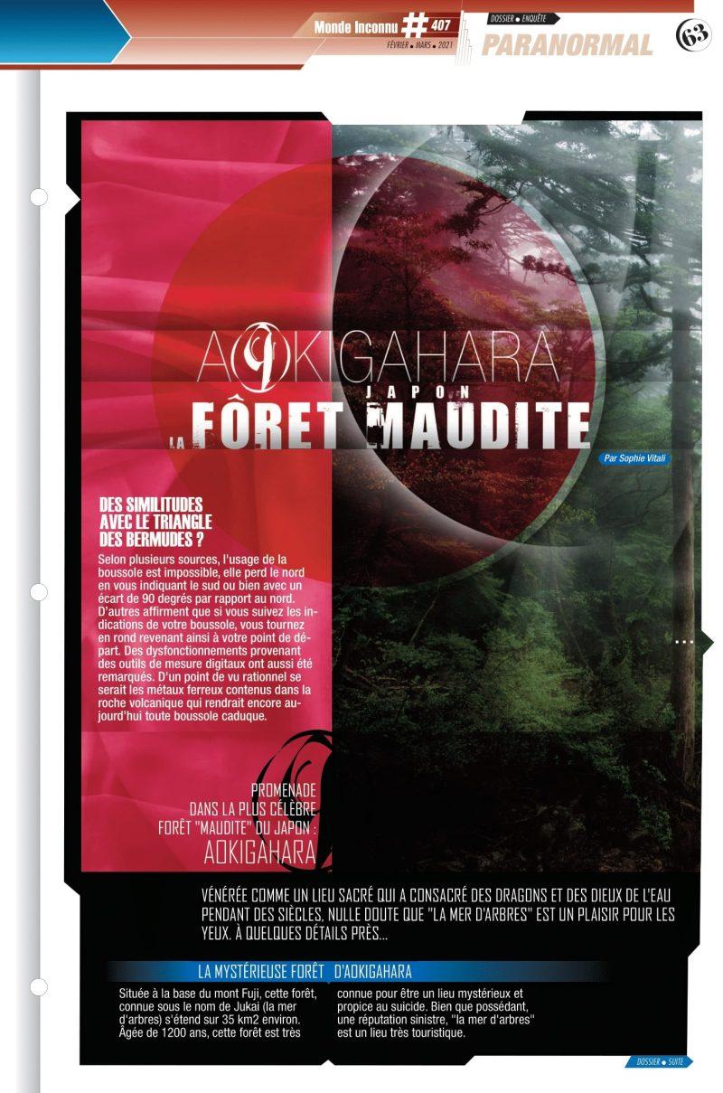 La forêt maudite d'Aokigahara par Sophie Vitali pour le magazine Monde Inconnu
